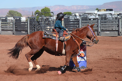Arizona Junior Rodeo