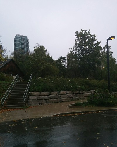 Up the valley #toronto #todmordenmills #donvalley #towers #playterestates #rain #latergram