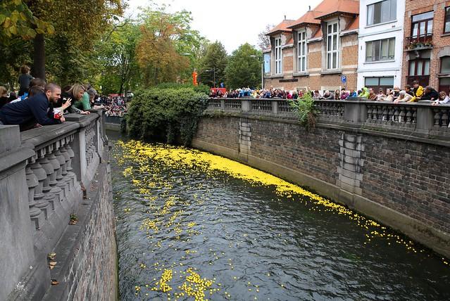 De 1e Enkeskoers (Duckrace) in Leuven (01/10/2017)