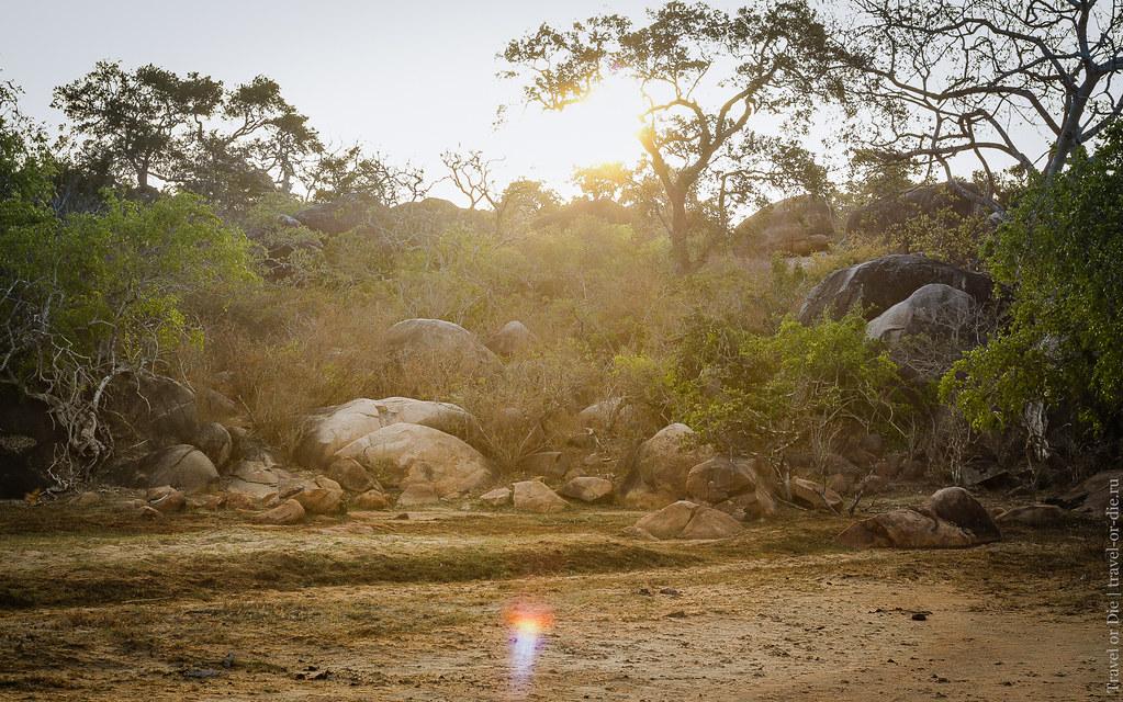 25.06-Yala-National-Park-Sri-Lanka-canon-1500px-007