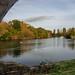 Chertsey Bridge-EA120214