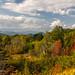 Early Autumn by John H Bowman