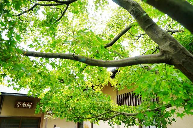 Photo:DSC03086 By 快樂雲