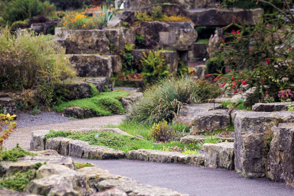 A curvy path going through different sized rocks on which plants grow, at Kew Gardens, London
