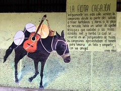 La CIUDAD cuenta lo que sus muros hablan - The CITY tells what its walls speak.