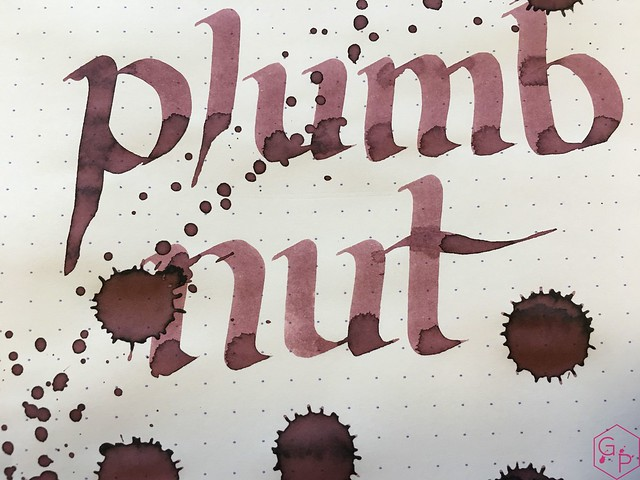 Ink Shot Review @RobertOsterInk Plumb Nut @MilligramStore 9