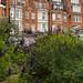 The Chelsea Physic Garden - 28 september 2017