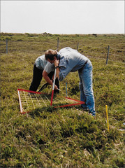 Heathland monitoring