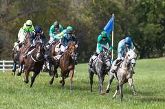 2017 Virginia Fall Races (90)