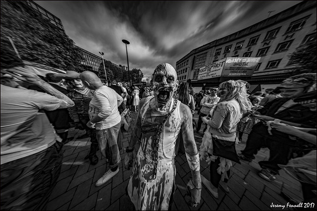 Paranoia in the bearpit nikon d7100 samyang 8mm f 3 5 fish eye