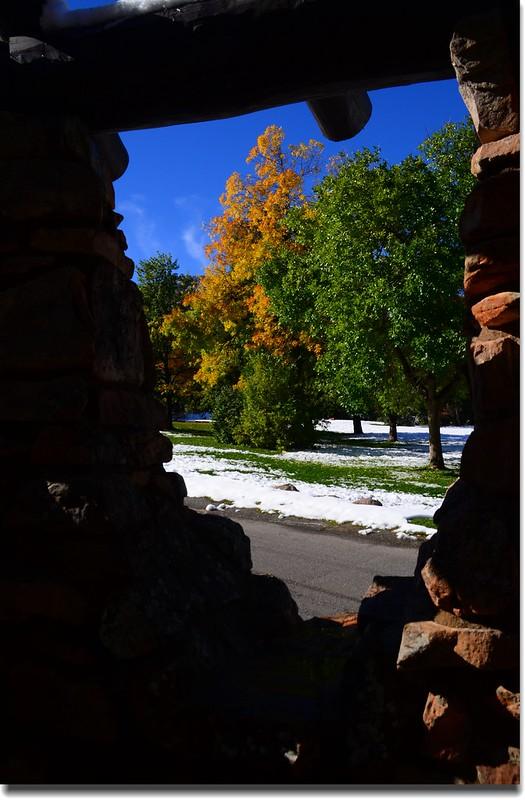 2017 Maple in Fall, Boulder, Colorado  (7)