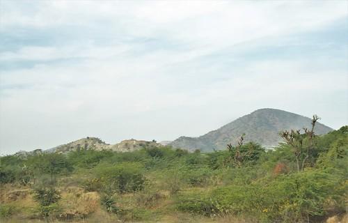 i-jodhpur-mount abu-route  (7)