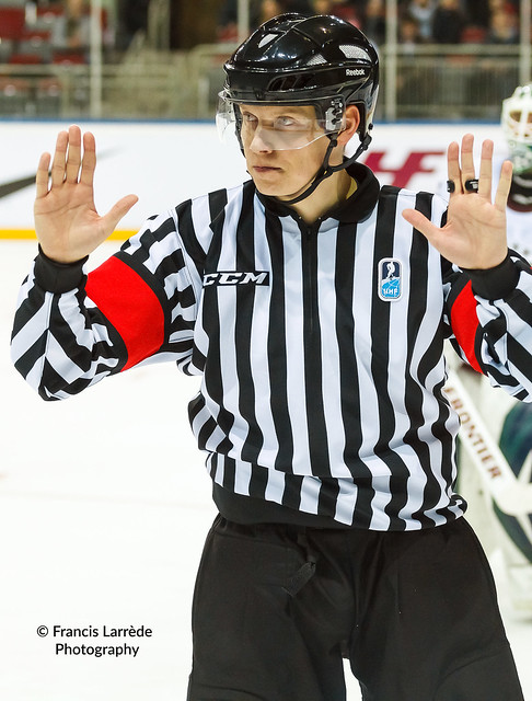 Jan HRIBIK (Referee) - 130207-331