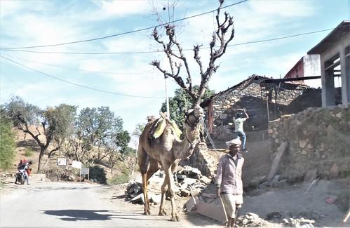 i-udaipur-kumbhalgarh-Route (11)