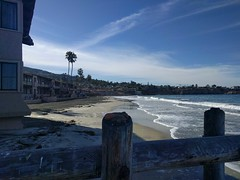 La Jolla Shores by Bonnie Ludka