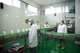 Sat, 10/28/2017 - 15:13 - Dairy processing, Al-Sharkia