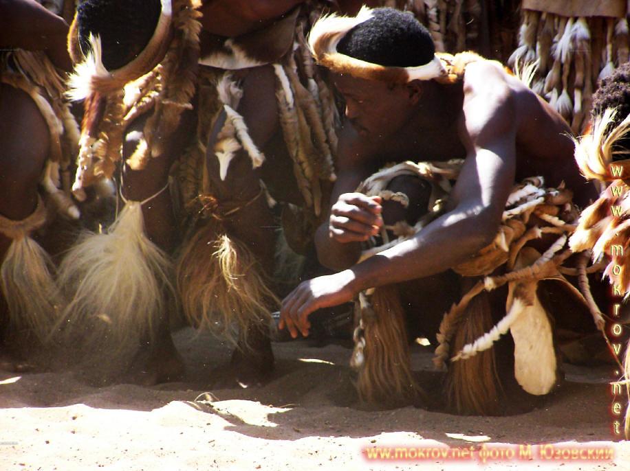 Национальный Парк Крюгера ЮАР  (12)