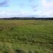 The Arun Valley near Burpham