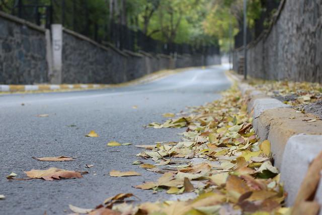 Sarı Yol /Via Giallo