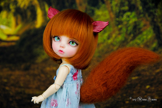 Squirrel set for tiny