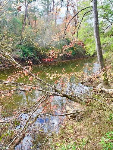Creek Scene, Hurricane Creek Park, Tuscaloosa, Alabama.
