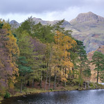 Blea Tarn autumn