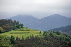 [2015-05-17] Basque Country