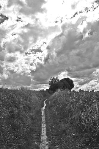 A Sunday Walk # 21 Path