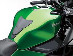 Kawasaki NINJA H2 SX  SE 2019 - 10