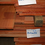 Euc_robusta_lumber