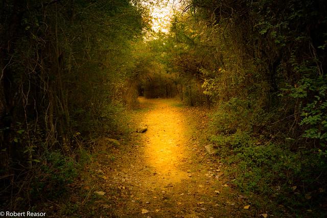 Fort Parker Hiking Trail