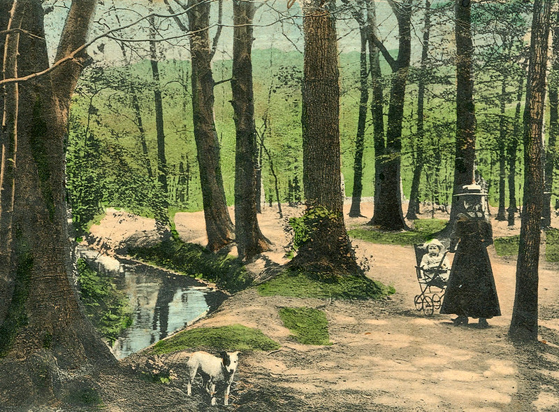 1900. Child and Nanny walk in the Eilenriede Forest Park, Hanover