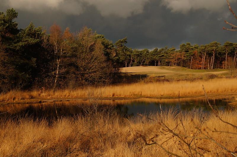 Landschap in herfstkleuren.