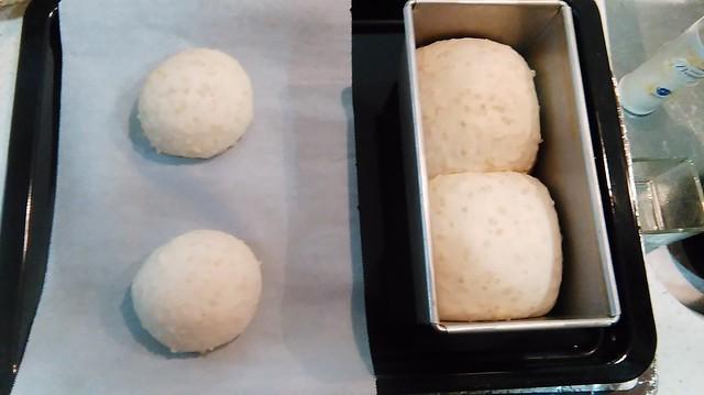 玄米食パン7