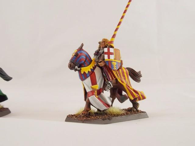 Bretonnian Knight, Nikon COOLPIX L320