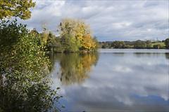 L'étang de Chevré - Photo of Liffré