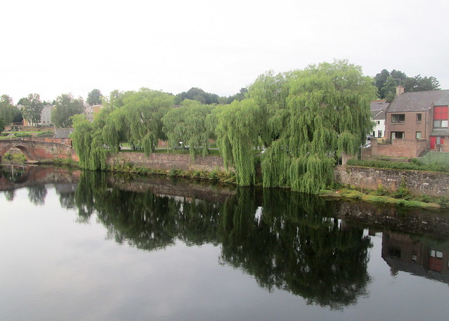 Willows, Dumfries