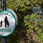 Slow Pedestrians at Ashton Park