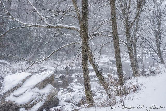 December Snow Williams River