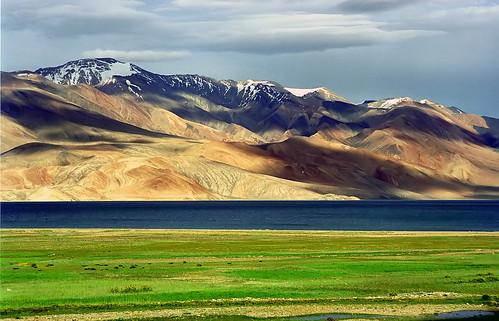 Ladakh Karakoram-West_Tibetan_Plateau_alpine_steppe
