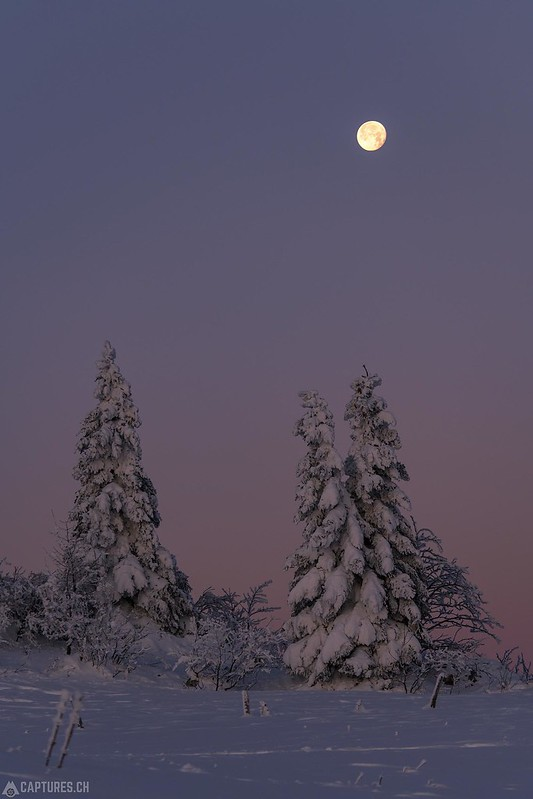 Moon - Tete de Ran