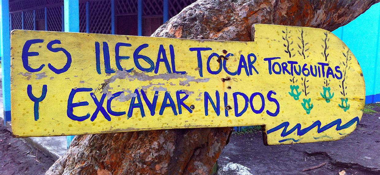 Viajar a Costa Rica / Ruta por Costa Rica en 3 semanas ruta por costa rica - 37538077784 56ba46c3ec o - Ruta por Costa Rica en 3 semanas