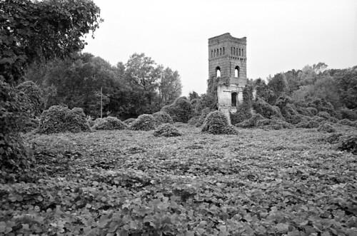 kudzu millremnant tower brick derelict abandoned northcarolina blackandwhite 35mm film ilford delta100 selfdev pyrocathd semistand nikon f100