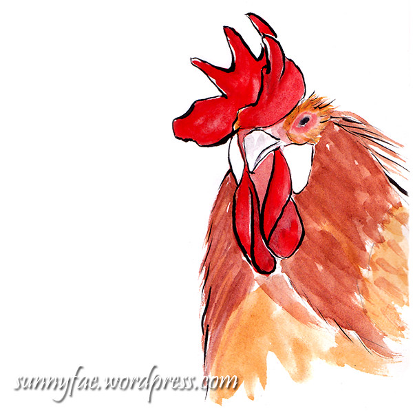The Catalana rooster/cockerel
