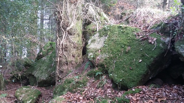 Pudsham Wood Rocks, lower