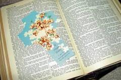 REGIONALE BIJBELQUIZ IN DE BEEMSTER Z-INN KAPEL