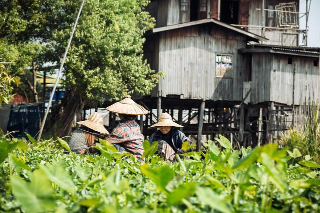 Myanmar #065