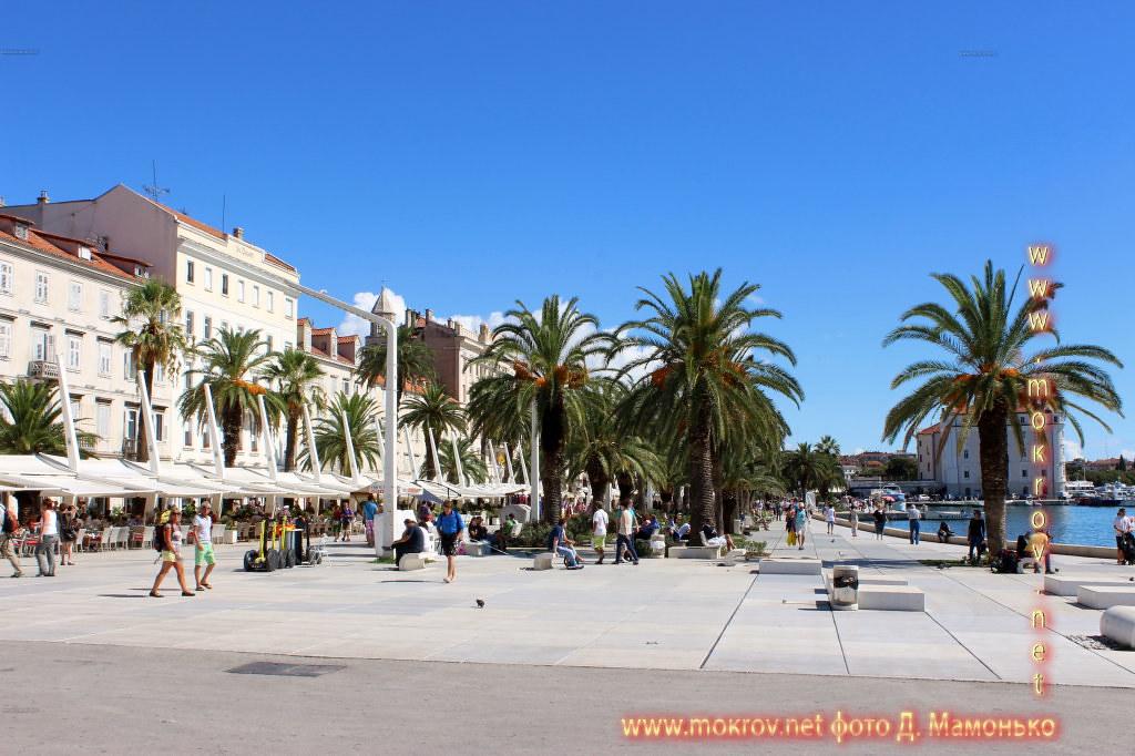 Сплит — город в Хорватии картинки