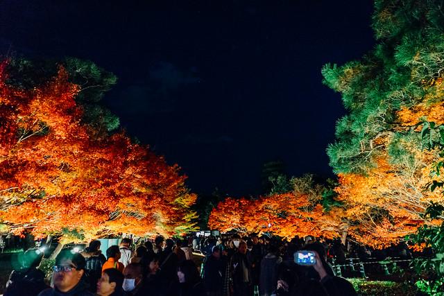 Kyoto_Byodoin_12