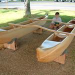 Double-hulled canoe made from Falcataria moluccana